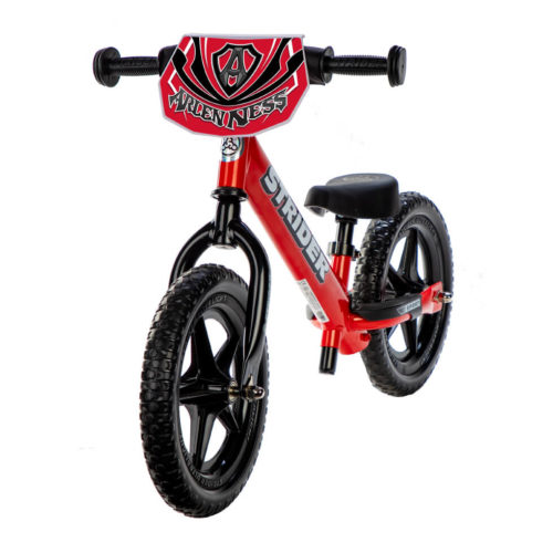 All Kids Bike - Arlen Ness Double Down Charity Bike