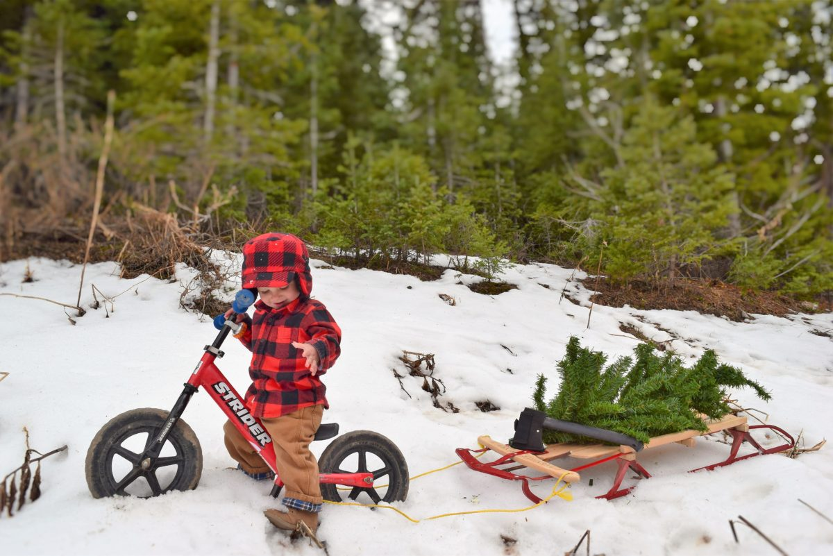 Stocking Stuffer Ideas from Strider Bikes